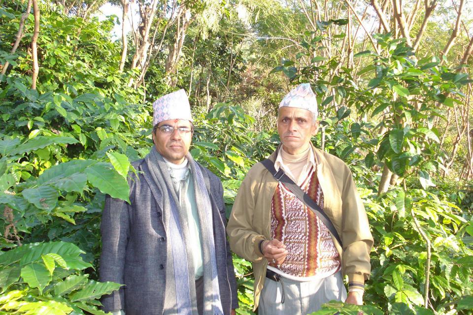 Nepal Organic Coffee Products